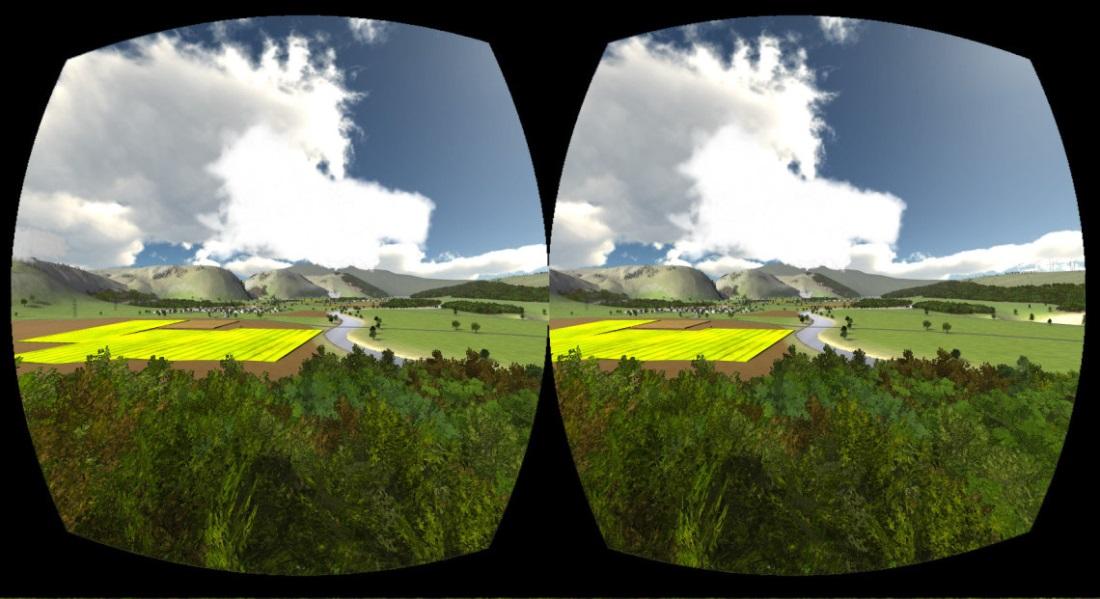 20150616 Bird-Simulator_oculus-Rift-both_eyes