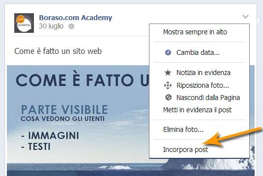 Facebook post incorporabili