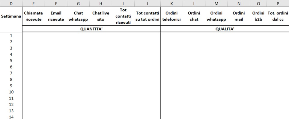 format-report-attivita