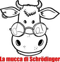 La Mucca di Scroedinger di Sironi Editore