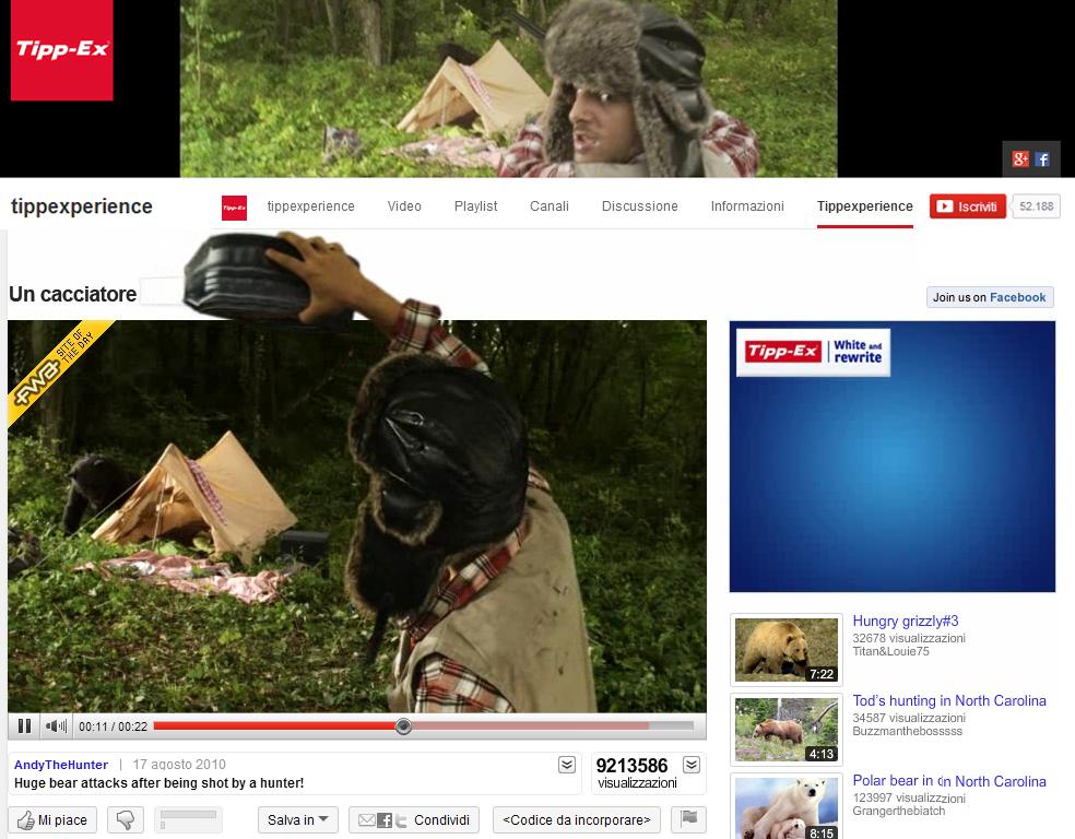 Tippex - A hunter shoots a bear